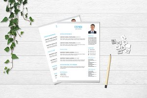 Clean Resume Template - V43