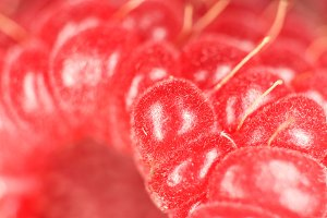 Raspberry Macro Closeup