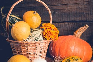 Autumn composition with pumpkins. Thanksgiving concept, copy space