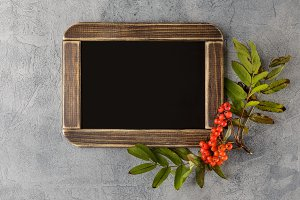 Blackboard with Autumn decorations