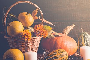 Autumn still life with pumpkins and fallen leaves. Thanksgiving concept, toned