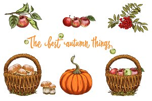 The best autumn things