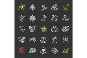 Spices chalk icons set