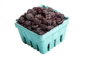 Black raspberries isolated