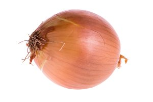 Spanish onion isolated