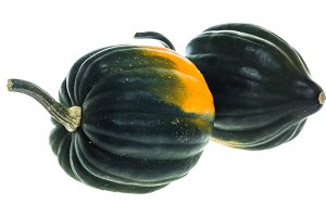 Acorn squash isolated