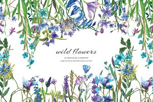 Watercolor Blue Wild Flowers