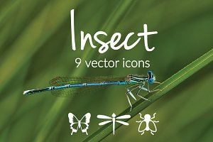 INSECTS - vector icons