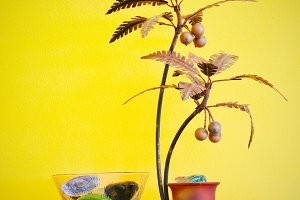 decorative tree and yellow wall