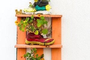 Colorful shoe flower pot
