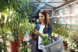 Young woman shopping for plants in a green store. Deciding if she wants to use a discount or sales promo.