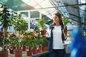 Landscape designer shopping for plants for her client in a greenhouse store