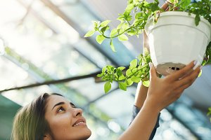 Beautiful gardener hanging plants in her owner run greenery store. Business concept.