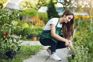 Young sporty gardener taking care of plants, preparing to transfer them to new bowls for upcoming sale.