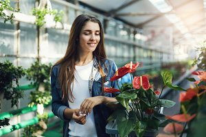 Young female shopping for flowers. Holding a bin with anthurium.