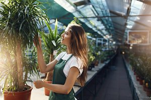 Beautiful gardener taking care of plants in a large greenhouse store