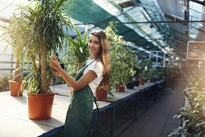 Young woman setting prices for plants in an owner operated greenhouse shop