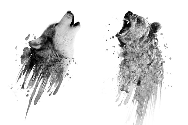 Wolf Print-Bear Print-Animal Print