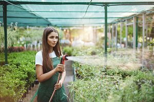 Posh female gardener watering plants she loves and takes care of. Young entrepreneur struggling to grow her business.