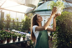 Posh female gardener hanging a plant in her owner operated greenhouse store running online business.