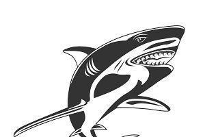 shark, icon, vector illustration