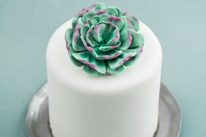Mini succulent wedding cake