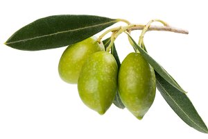 Raw olives with leaves.