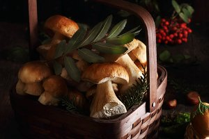 porcini in the basket