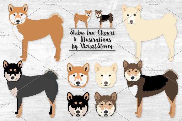 Shiba Inu Spitz Dog Illustration in Illustrations