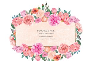 Watercolor Peony & Rose Collection