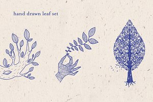 Leaf Tree Foliage Hand Drawn Set