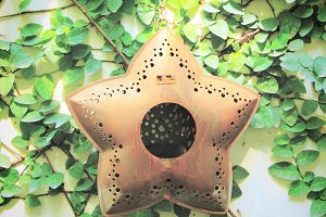 star hanging for decorated