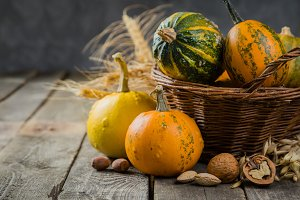 Thanksgiving concept - decorations with pumpkins