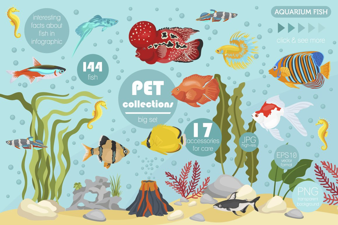 Freshwater aquarium fish big set illustrations for Fish and pets unlimited