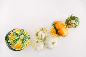 Top view of a mix of pumpkins