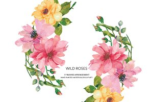 Watercolor Wild Roses Clipart