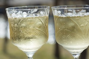 Champagne Glass Toast