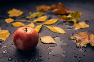 Red apple and yellow wet leaf