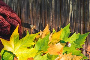 Autumn leaves on a dark old wooden background