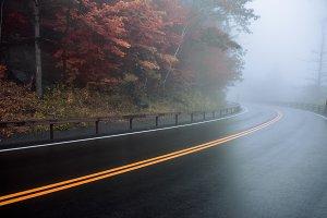 Asphalt wet road curve