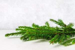 A fur-tree branch lies on a white table. Christmas decoration on a light background.