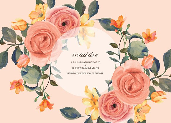 Watercolor Floral Clipart -Graphicriver中文最全的素材分享平台