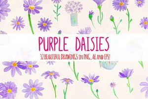 Purple Daisies 32 Watercolor Element
