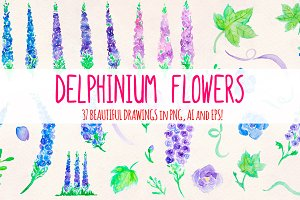 37 Delphinium Flower Graphics