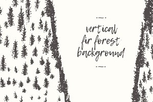 Vertical fir forest backgrounds