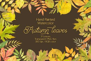 Watercolor autumn leaves clip art