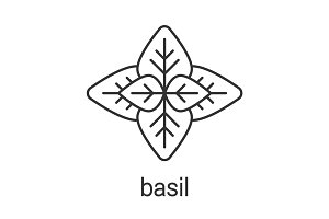 Basil linear icon