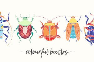 Set of beautiful vector beetles