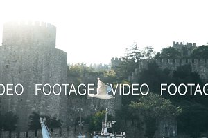 Slowmotion of seagull flying near famoust Istanbul fortress on Bosphorus
