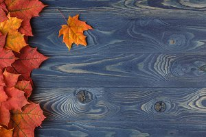 colored leaves on a wooden table